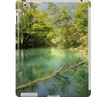 peace of nature iPad Case/Skin