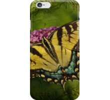 Eastern Tiger Swallowtail Butterfly - Papilio glaucus - Female iPhone Case/Skin