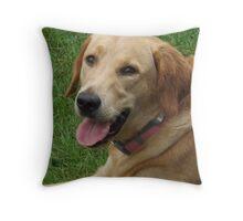 Dog at the park Throw Pillow