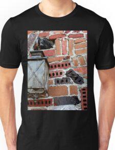 Brick Light Unisex T-Shirt