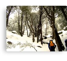 Snowy Hike Canvas Print