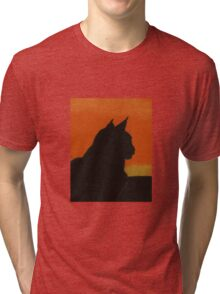 Feline - Sunset Tri-blend T-Shirt