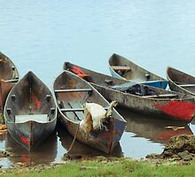 Parking Boats by Jola Martysz
