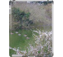 Ducks on the Lake iPad Case/Skin