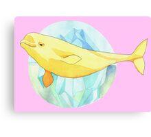 Beautiful Beluga Canvas Print