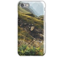 Alps of Switzerland - Rainy Afternoon near Camp Blenio (Ticino, Switzerland) iPhone Case/Skin