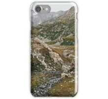 Greina High Plain in Grisons (Switzerland) on Cloudy Summer Day iPhone Case/Skin