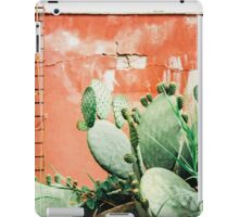 Closeup on Cacti Growing in Front of Shabby Red Wall Shot on Porta 400 iPad Case/Skin