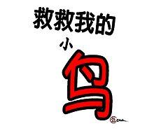 救救我的小鸟 Save My Little Birdy Chinese Game Title (EG-000003) Photographic Print