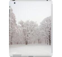 Snow scene Japan iPad Case/Skin