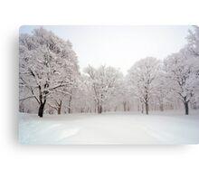 Snow scene Japan Metal Print