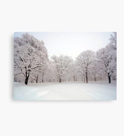 Snow scene Japan Canvas Print