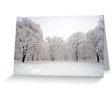 Snow scene Japan Greeting Card