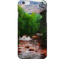 Queen River Queenstown Tasmania  iPhone Case/Skin