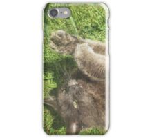 Fluffy Cat on Grass iPhone Case/Skin