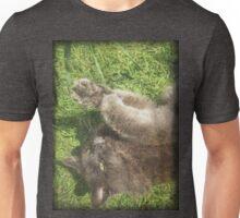 Fluffy Cat on Grass Unisex T-Shirt