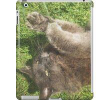 Fluffy Cat on Grass iPad Case/Skin