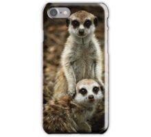 Meerkats iPhone Case/Skin