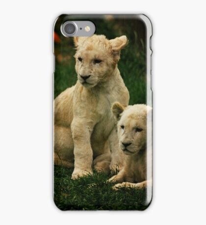 White Lion Cubs iPhone Case/Skin