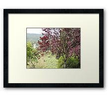 A Dash of Spice in the Green Framed Print