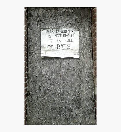 The building full of bats Photographic Print