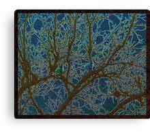 Jeweled Birds In Winter Tree Canvas Print