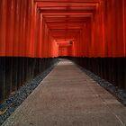 Fushimi Inari Taisha - 伏見稲荷大社 by Phillip Munro