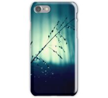 Blue Willow in the rain iPhone Case/Skin