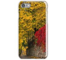 autumn cityscape after rain, with yellowed trees and street lamps iPhone Case/Skin