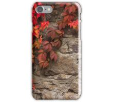 plant with red leaves on stone wall iPhone Case/Skin