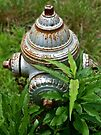 Hydrant surrounded by weeds by Evelyn Laeschke