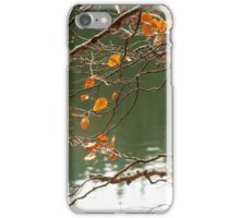 branches with foliage on blurred background of forest lake iPhone Case/Skin