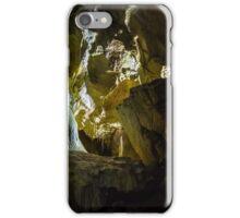 Ursus spelaeus cave in romanian mountains transilvania iPhone Case/Skin