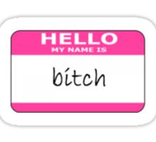 hello my name is bitch Sticker
