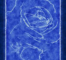 Pink Roses in Anzures 2 Outlined Dark Blue by Christopher Johnson