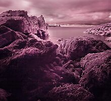 Infra Red Seaweed Rock , Broad Haven, Pembrokeshire by Mark Haynes Photography