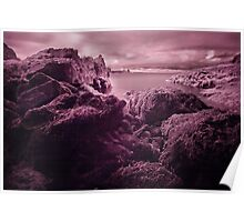 Infra Red Seaweed Rock , Broad Haven, Pembrokeshire Poster