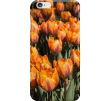 Tulips, Tulips, Tulips! iPhone Case/Skin