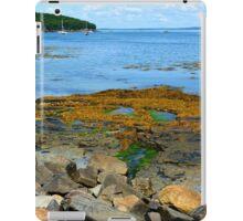 Bar Harbor Coast Line iPad Case/Skin