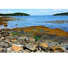 Bar Harbor Coast Line Photographic Print