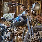 Harley Rat by Randy Turnbow