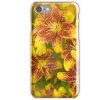 Lilycrest Gardens - Bronze Blast iPhone Case/Skin