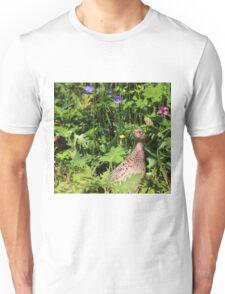 Female pheasant in garden Unisex T-Shirt