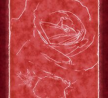 Pink Roses in Anzures 2 Outlined Red by Christopher Johnson