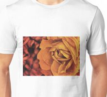 Fragrant rose, colorful drawing with delicate rose petals Unisex T-Shirt