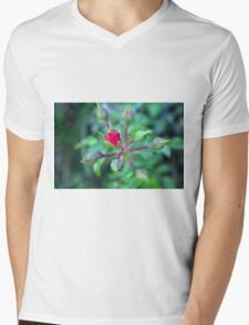 Beautiful gentle pink roses background Mens V-Neck T-Shirt