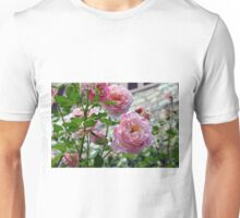 Beautiful gentle pink roses background Unisex T-Shirt