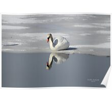 The Narcissistic Swan Poster