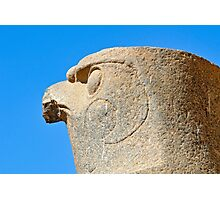 Statue of Falcon God Horus, Edfu Photographic Print