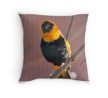 Red Bishop on its perch Throw Pillow
